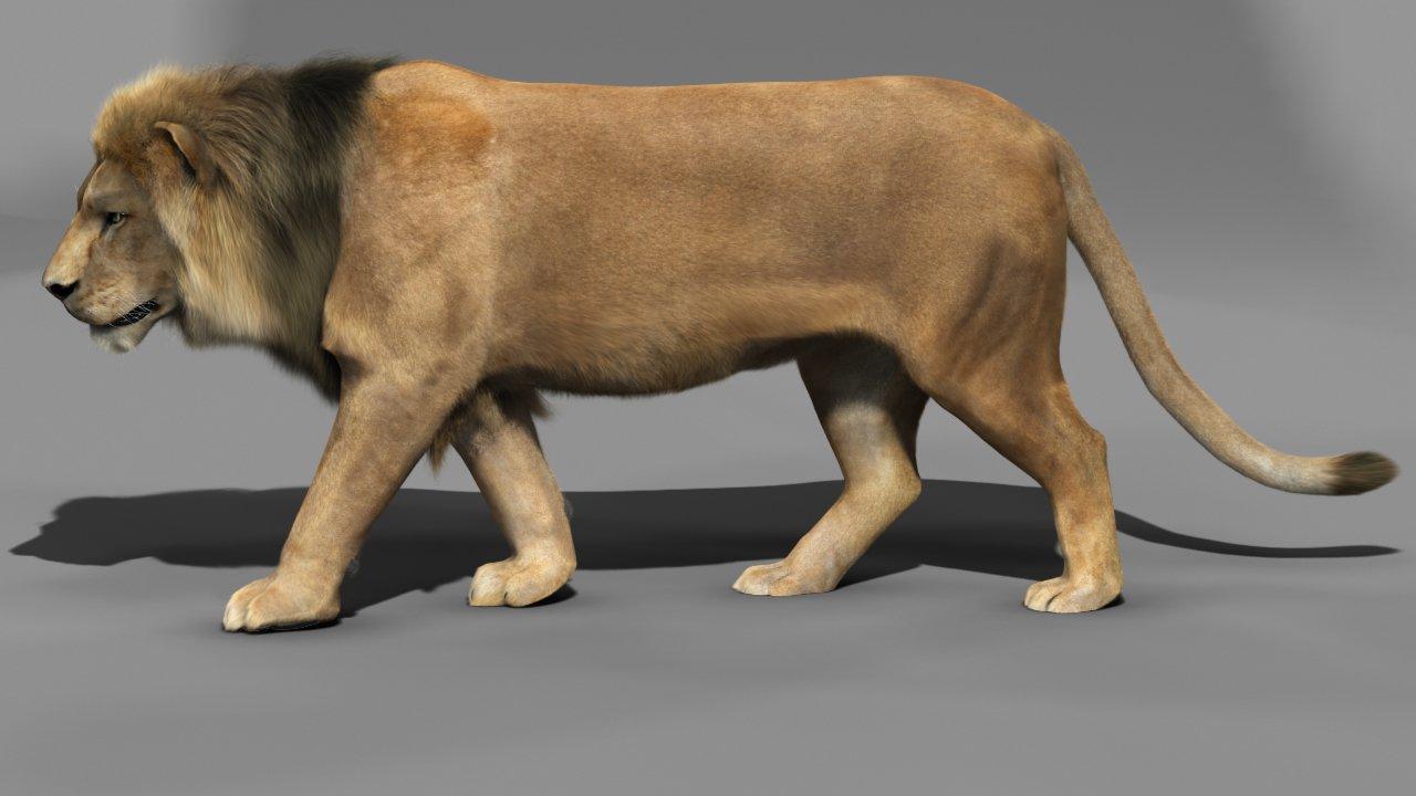 Lion 3D Model in Cat 3DExport