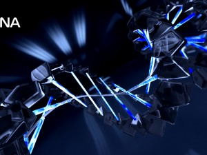 DNA animated