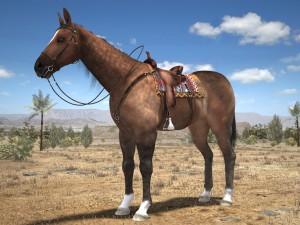 Cowboy Horse with saddle