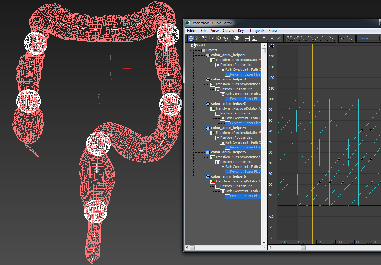 Human colon Animated Modelo 3D in Anatomía 3DExport