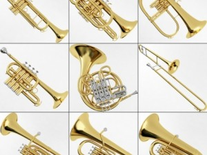Brass Musical Instrument Collection