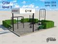 Gym Level 3