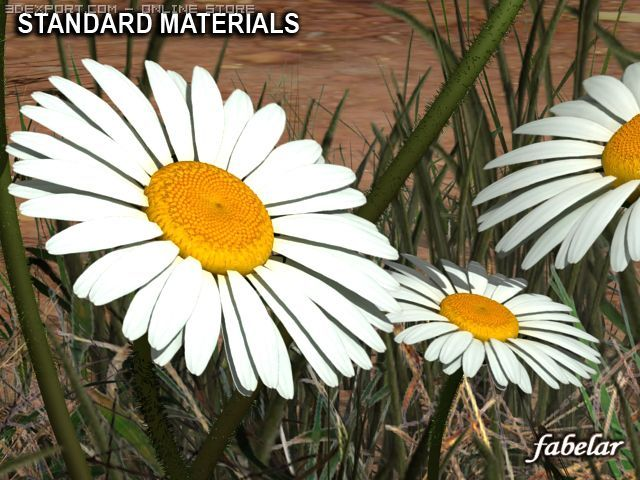 Daisy STD Mat 3D Model