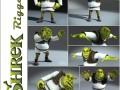 Shrek rigged 1