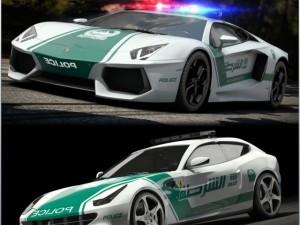 DUBAI Police vol1
