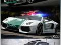 DUBAI Police vol2