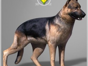 German Shepherd Textured