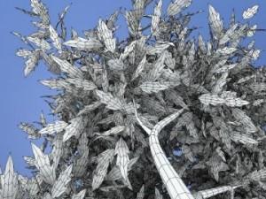 Thin Tree2