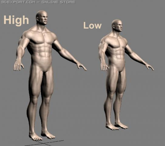 Athletic male + normal maps 3D Model