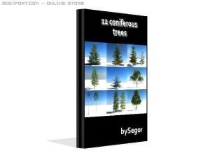 12 coniferous trees