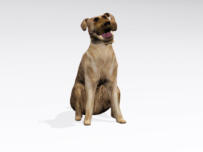 Sitting Dog 3D Model in Dog 3DExport