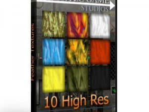 10 High Res Feather Textures