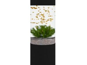 Cylindrical Aquarium
