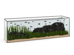 Large Rectangular Aquarium