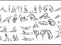 Yoga Poses Outlines