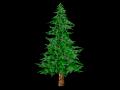 Toon Textured Pine Tree