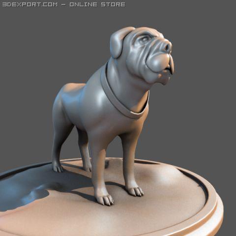 Bull Dog 3D Model