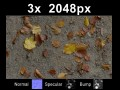 3x Leaves on Ground 1