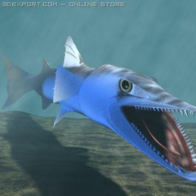 Killer Barracuda 3D 3D Model
