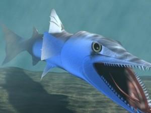 Killer Barracuda 3D