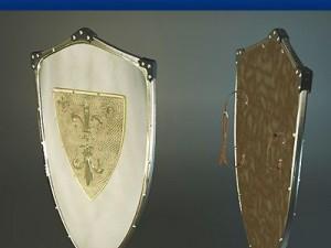 Charlemagne Polished Shield