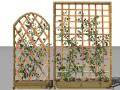 2 ivy trellis walls