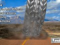 Silver tyre