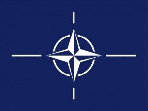 Texture NATO texture Flag