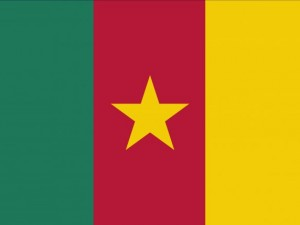 Kamerun flag