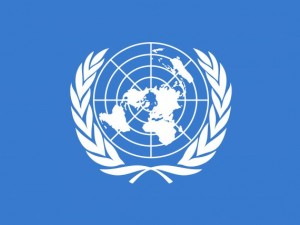 Texture United Nations texture Flag