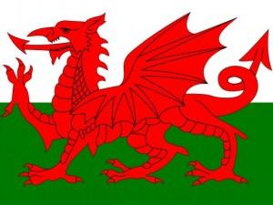 Uels flag