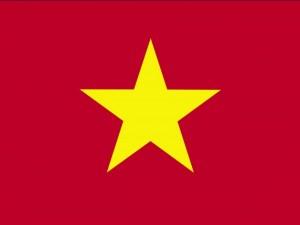 Vietham flag