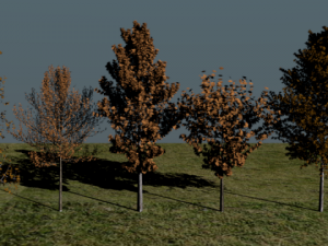 High Poly Autumn Tree Package