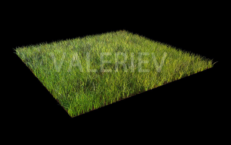 Grass 3d Model In Environment 3dexport