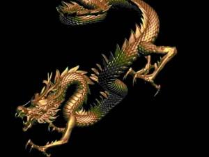Dragon 011