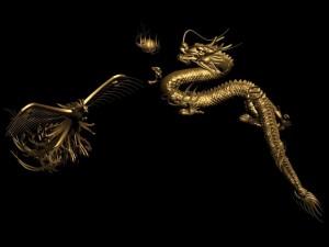 Dragon 014