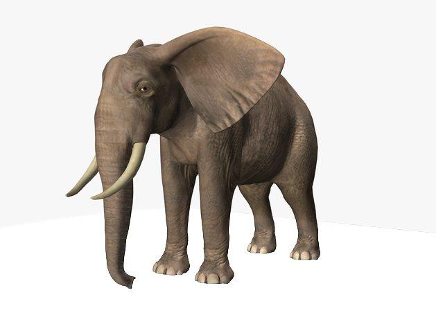 водителем слон модель 3д макс телефоны
