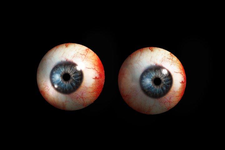Eye 3D Model in Anatomy 3DExport