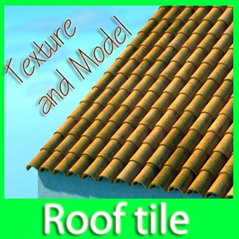 3D Model Tile Roof Dirty  Clean Textures 3D Model