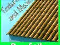 3D Model Tile Roof Dirty  Clean Textures