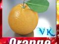 Orange High Detailed High resolution textures