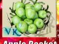Green Apples in Decorative Metal Bowl