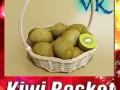 Kiwi Fruit in Basket