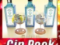 High Detailed Bombay Sapphire Collection