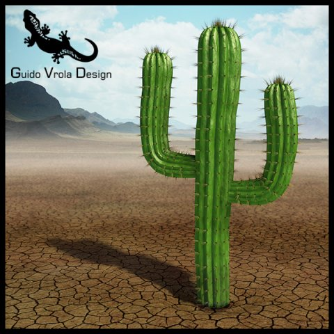 Saguaro cactus 3D Model