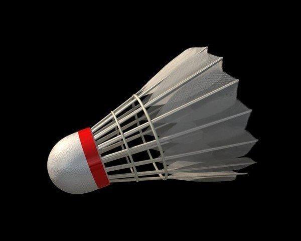 Shuttlecock 3D Model