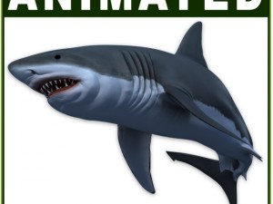 White Shark CG