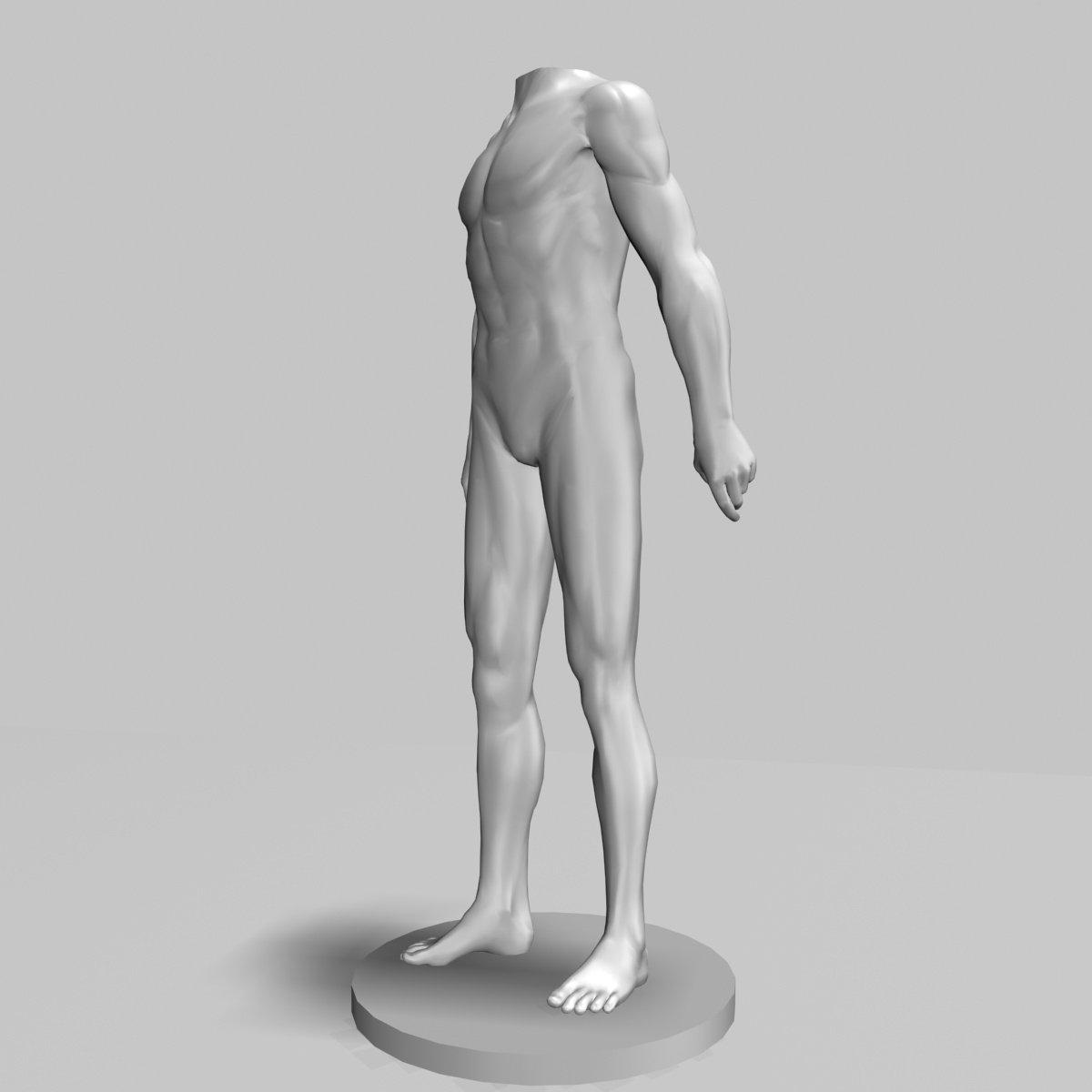 Male Mannequin 3D Model in Man 3DExport