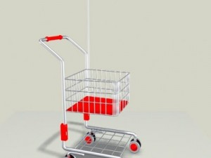 Childrens Shopping Cart
