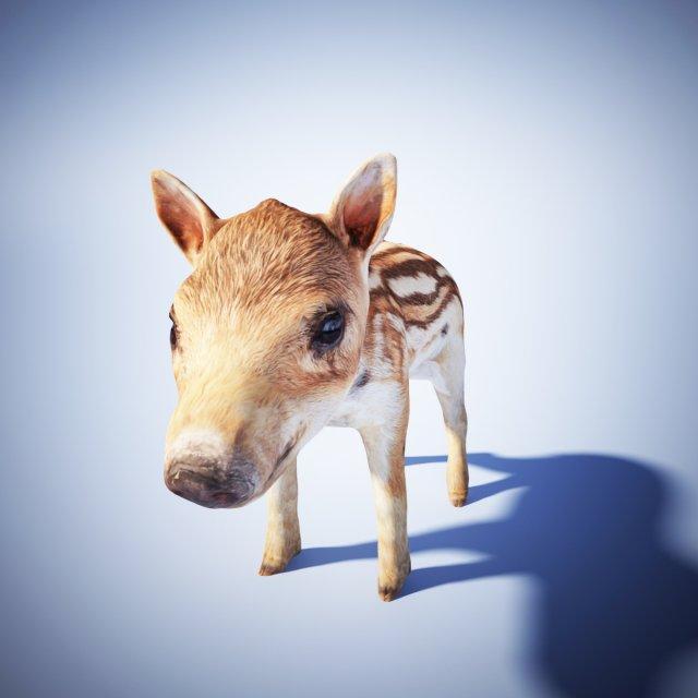 Wild piglet 3D Model